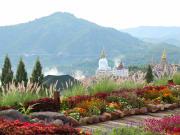 Flower garden with view of Wat Pha Sorn Kaew