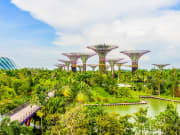 Singapore_Gardens_By_the _Bay_shutterstock_206615731