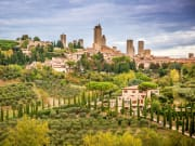 san gimignano, cypress trees, fields, cityline