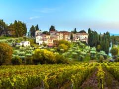 hamlet Fonterutoli, Castellina, chianti