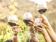 Salento_Wine_Tasting