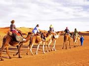 Dubai, Desert, Sand dunes, Camel ride