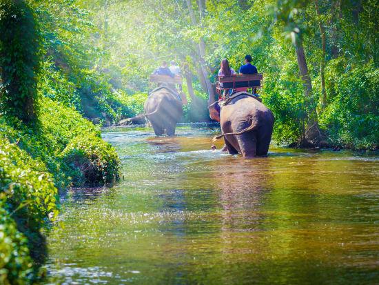 Thailand_Chiang_Mai_Elephant_Ride_Trekking_Jungle_Safari_shutterstock_474048352
