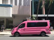 pink_sails_van
