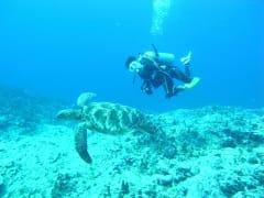 年末年始限定 | グアムの観光・オプショナルツアー専門 VELTRA(ベルトラ)