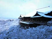 kiyomizudera winter