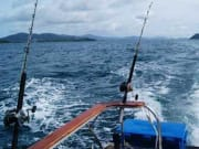 Rancha Big Game Fishing 3
