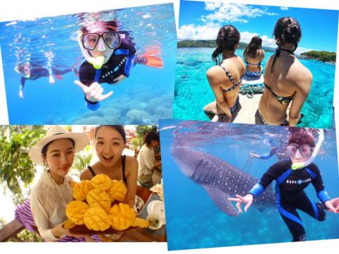 ジンベイザメと泳ぐツアー | セブ島の観光・ツアーの予約 VELTRA(ベルトラ)