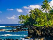 USA_Hawaii_Maui_Hana_shutterstock_220701625