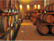 USA_Ontario_Wine Tasting_Barrels