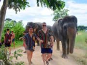 Pattaya Elephant Jungle Sanctuary (9)