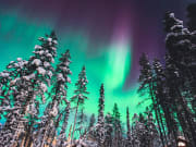 Northern Lights tour in Finland