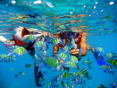 ラチャヤイ島 (観光情報)   プーケット観光 VELTRA(ベルトラ)
