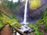 USA_Portland_Latourell Falls