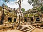Cambodia_TaProhm_shutterstock_192940364