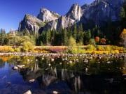 USA_California_Yosemite National Park_shutterstock_201033065