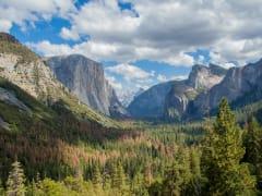 USA_California_Yosemite_National_Park_Tunnel_View_shutterstock_597188564