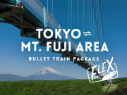 Japan_Flex-Rail-Ticket_Fuji