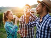 Vineyard Wine Drinking
