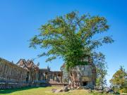 Cambodia_Preah_Vihear_shutterstock_1236927304