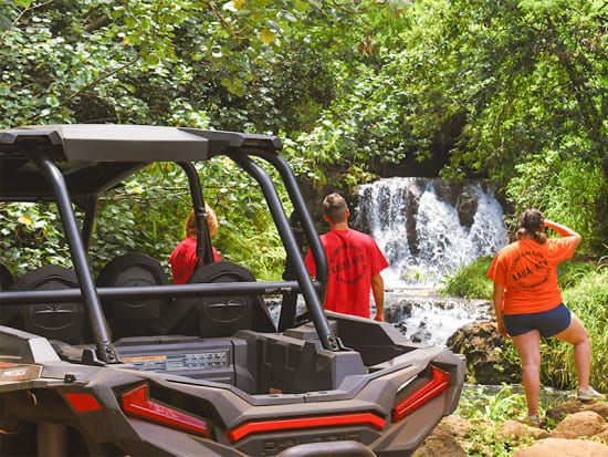 Waterfall Tour Photo 8