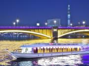 白鷺と蔵前橋