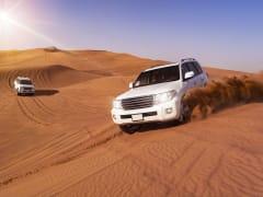 UAE Dubai Desert Safari Sand Dune