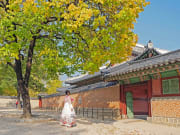 Changdeokgung Palace with Hanbok Wearing (3)