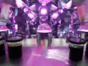 金魚万華鏡6