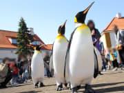 ペンギンP