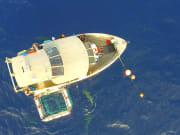 shark boat aerial 1