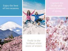 Spring-Winter-Japan