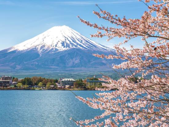 Mt. Fuji cherry blossom sakura spring view