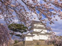 OdawaraCastle-spring_shutterstock_622947044