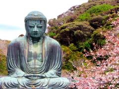 GiantBuddha-Kamakura-Spring_shutterstock