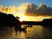 (4)マングローブ林の向こうに沈む夕日