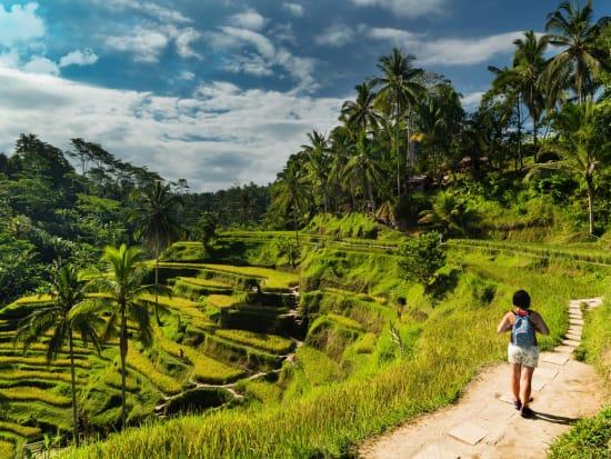 Indonesia_Ubud_RiceTerrace_shutterstock_695970166