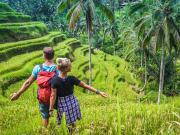 Indonesia_Ubud_RiceTerrace_shutterstock_1609342867