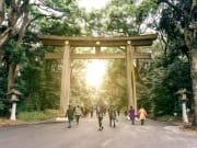 Follow a winding path to Meiji Shrine