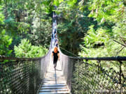 Lynn-Canyon-Suspension-Bridge-03