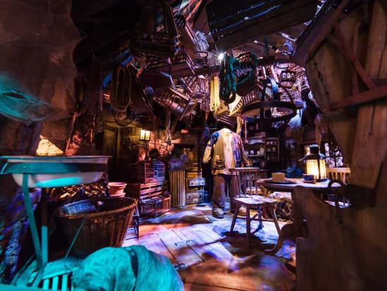 harry potter studio tour london, hagrid's hut