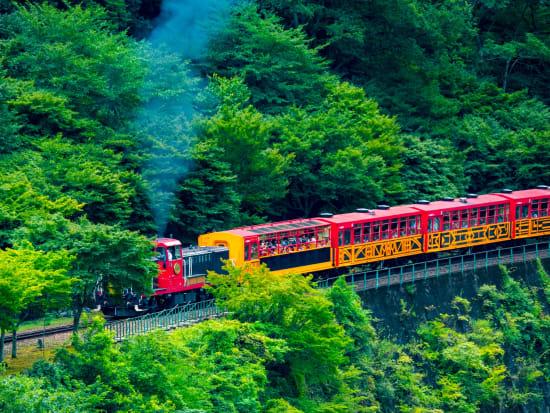 Sagano Scenic Railway ride