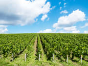 France, Chamgpagne, Moet and Chandon