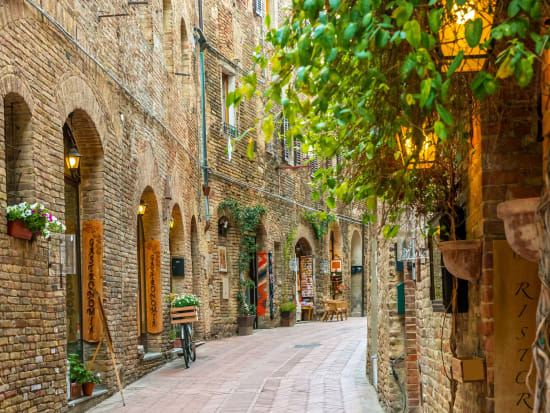 Siena and San Gimignano Tour from Florence