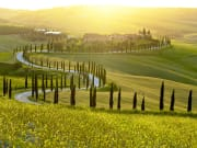 chianti hills, tuscany from florence day trip