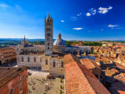 Siena Cathedral, siena duomo