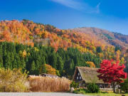 Japan_Gifu_Shirakawago_autumn_fall_shutterstock_752408743