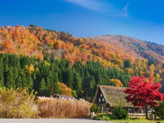 Japan_Gifu_Shirakawago_autumn_fall_shutterstock_752408743
