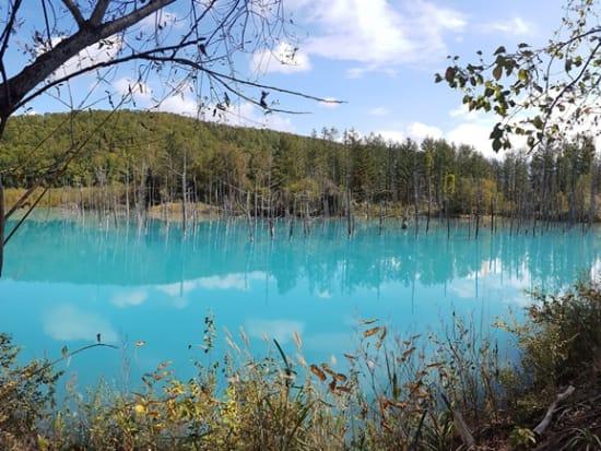 Blue Pond Perfect