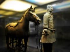 二号坑の騎兵とモンゴル馬